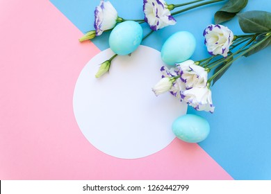 Easter eggs and spring flowers narcissi on blue background