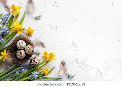 Easter eggs and spring flowers on white background