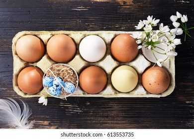 Easter eggs with spring flowers on a old dark wooden background.