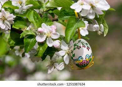 Easter egss hanging on the twig of apple tree in the garden