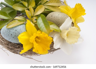 Easter floral arrangement in bird's nest isolated on white background