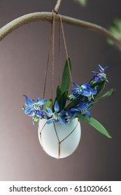 Easter holiday background with flowers in egg shell hanging