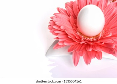 Easter holiday concept luxury background