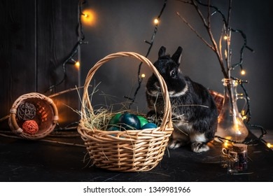 Easter holiday: a little black Easter bunny and a wicker basket with colored eggs.