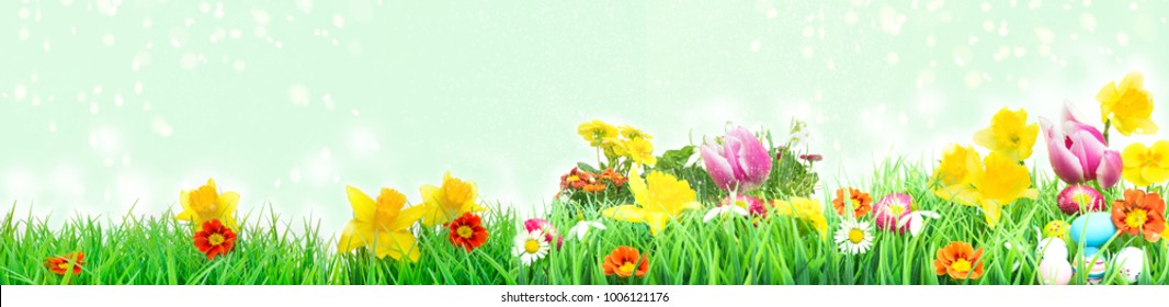 Easter meadow, flower meadow with tulips, daffodils, Easter eggs