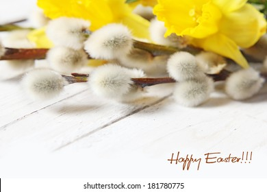 easter narcissus and pussy willows