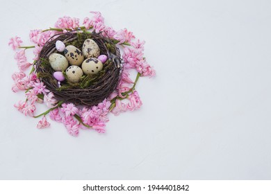 easter nest of beautiful pink hyacinth flowers with a quail eggs on a white backgrorund. Easter composition. Horizontal frame. Free space for text