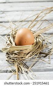 Easter nest, egg in straw