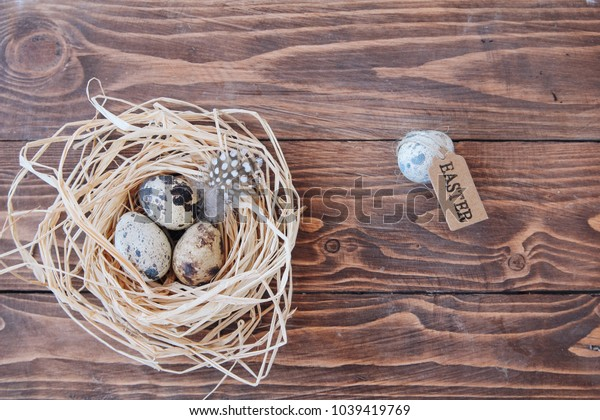 easter, nest, quail egg