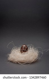 Easter still-life  with quail egg in nest on old canvas background