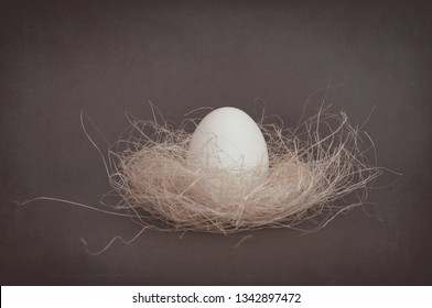 Easter still-life  with white egg in nest on old canvas background