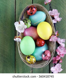 easter symbol colorful painted eggs on a wooden background