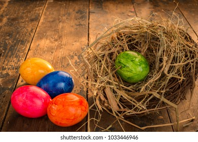 easter themed background eggs flowers stock photo edit now