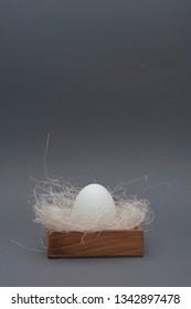 Easter  white egg in nest on grey background
