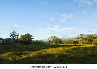 Eastern plains in Colombia.