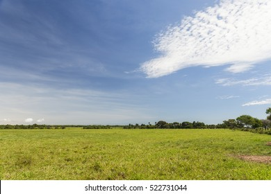 Eastern Plains in Colombia