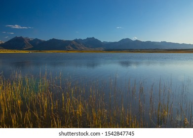 Eastern Sierra mountains from Alkali Lake