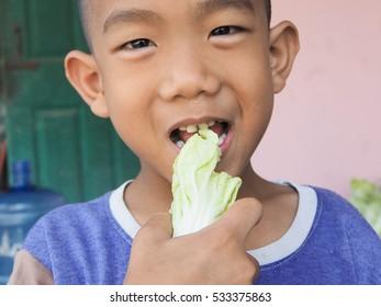 eat Vegetables Children eat Vegetables lovely rural lifestyle.