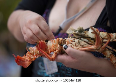 eating cooked lobster