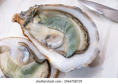 Eating of fresh big raw fine de claires vertes green french oysters from Marennes-Oleron, close up