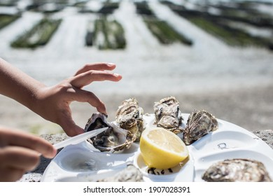 Eating oysters with lemon directly at oyster farm in Cancal, Brittany, France. Girl's hand holding one oyster with with her fingers.