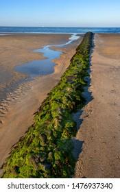 ebb sand beach in norderney, travel germany wattenmeer