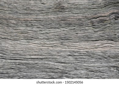 Ebony wood texture detail background