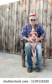 Eccentric elderly farmer with a hat, checkered shirt, blue jeans, glasses and pink rubber gloves plays with funny red piglet in party dunce hat. Hands close-up. Copy space. 2019 Year Yellow Pig