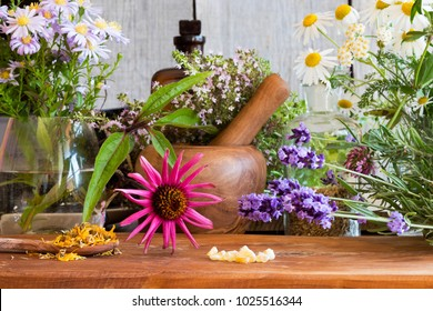 Echinacea, lavender, chamomile and other herbs on a wooden table