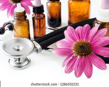 Echinacea natural medicine