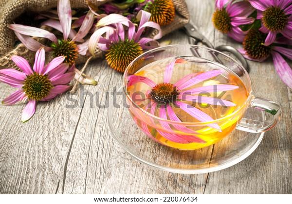 Echinacea purpurea. Cup of herbal echinacea tea on rustic wooden table