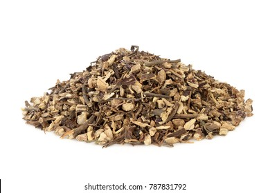 Echinacea root herb used in alternative herbal medicine to boost the immune system,  protects against colds and reduces symptoms and also has other health benefits.  Asteraceae, purpurea.