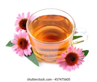 Echinacea tea close up isolated on white backgrounds. Medicinal tea.