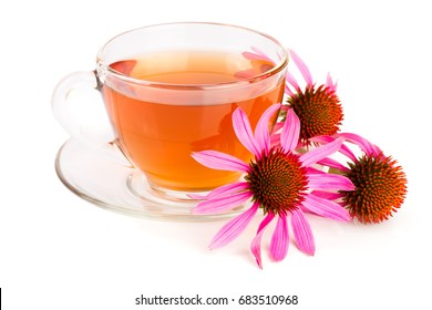 Echinacea tea isolated on white background. Medicinal tea
