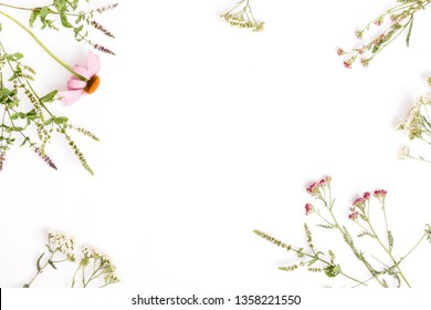 Echinacea, Yarrow, medicinal herbs background, flat lay, top view