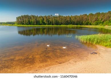 Echo artificial lake pond in Zwierzyniec, Roztocze National Park, Poland.