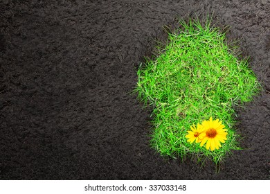 Eco background with soil and house of green grass