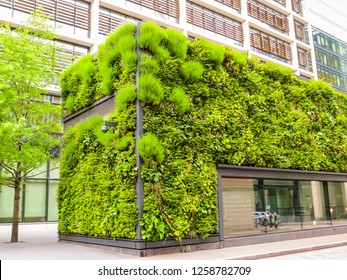 Eco city. Ecological architecture, live plants on a building facade