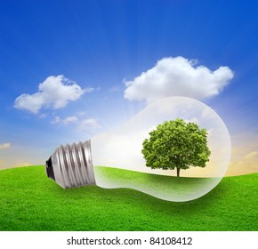 Eco concept, green tree growing in a bulb with blue sky