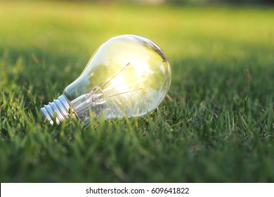 Eco concept - Lightbulb in green nature in bright light