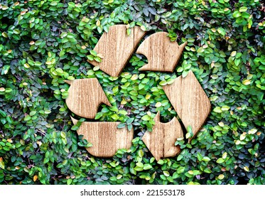Eco concept :Wood texture Recycle icon on green leaves wall