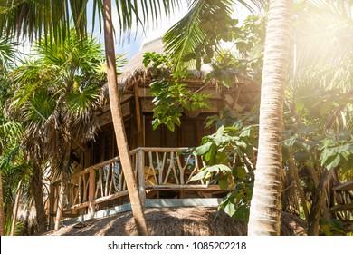 Eco hotel. A hut on the beach. Wooden house in the tropics. Beach house