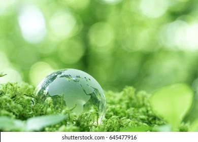 Eco Image