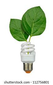 eco lamp - two green leaves inside a saving bulb