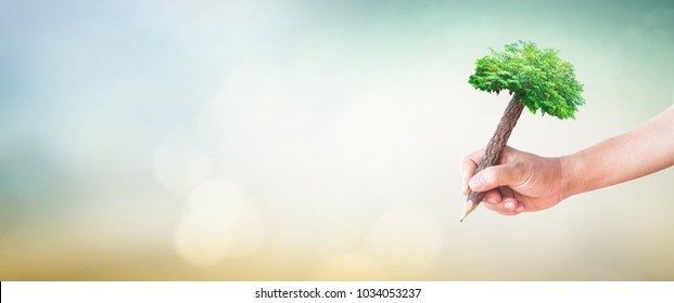 Eco teacher training concept: Student hand holding pencil of tree and writing on green meadow over blurred forest background