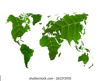 eco world map made of green leaves, concept ecology