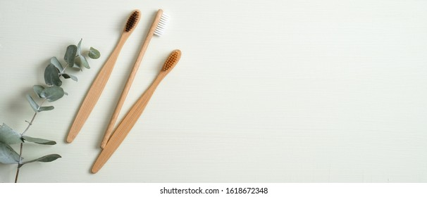 Eco-friendly bamboo toothbrushes and eucalyptus leaf on green background. Natural organic bathroom beauty product concept. Flat lay, top view, copy space