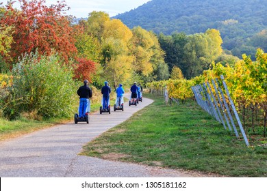 eco-friendly Segway scooters travel tour in Vineyards Palatinate region, German Wine Road. Autumn tour of German vineyards, Rhineland-Palatinate, Germany