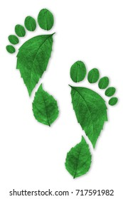 Ecologic footprint set on a wooden background. Symbolic approach to sustainability