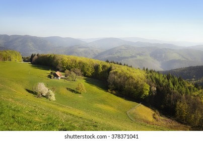 Ecological farm, holiday-house with meadow and blooming trees in the Alps in spring